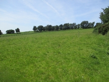 c. 2 Ac/ 0.80 Ha, Greenhall Upper, Ballymore Eustace, Naas, Co. Kildare
